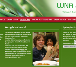 luna_website_1